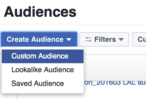create audience type