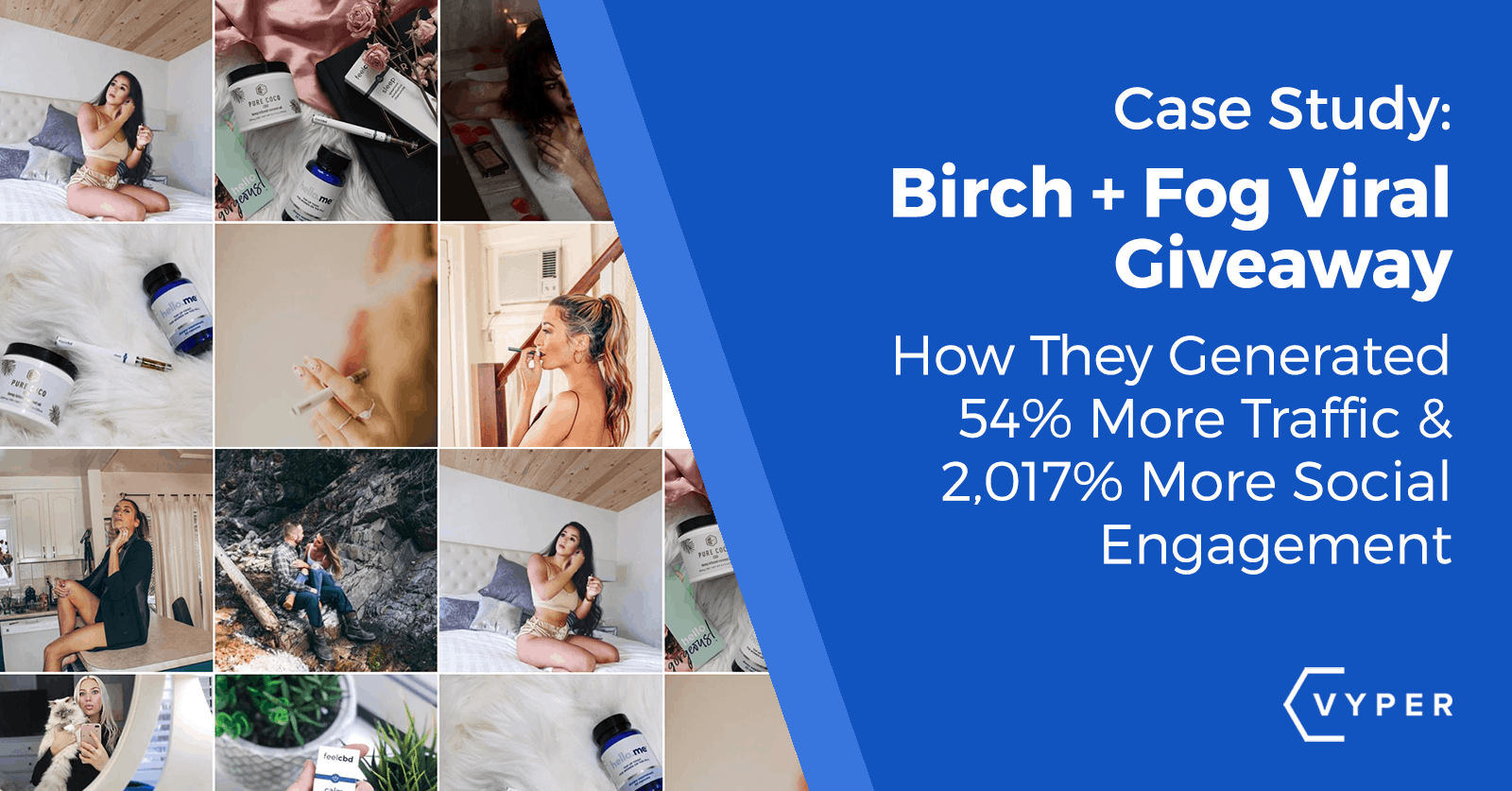 Case Study: Birch + Fog Generates 35% Increase In Traffic (CBD Marketing)